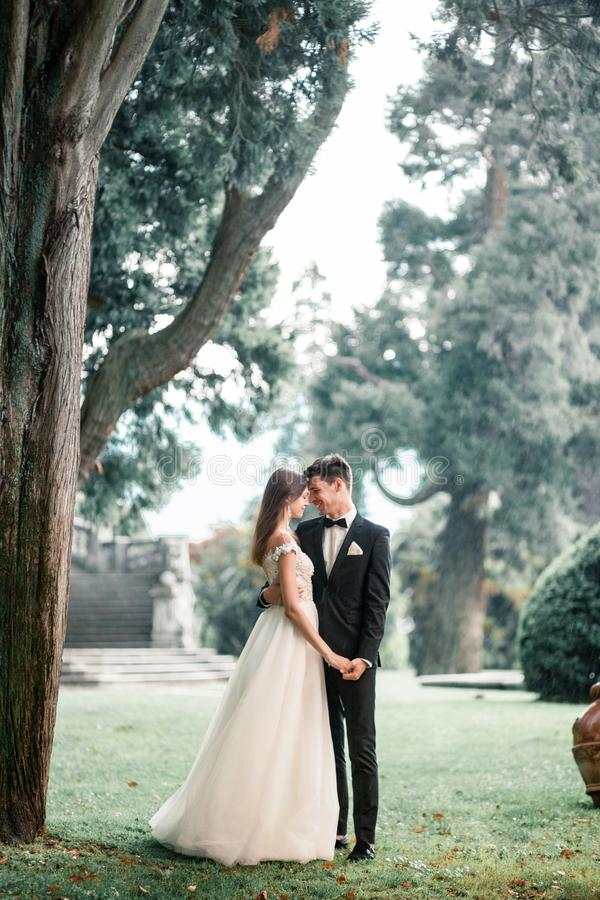 Wedding couple kissing in the park in the rain royalty free stock photos