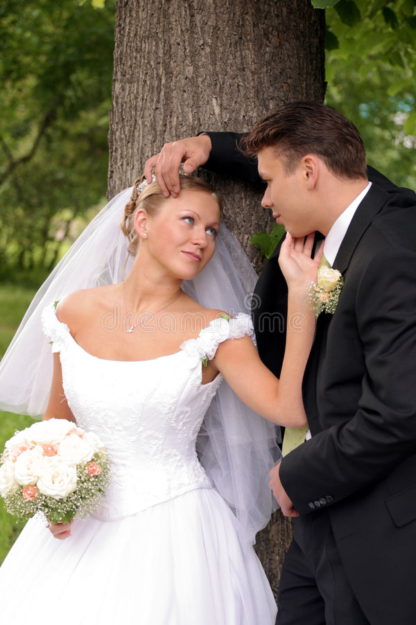 Wedding Couple In Love Kissing Stock Images