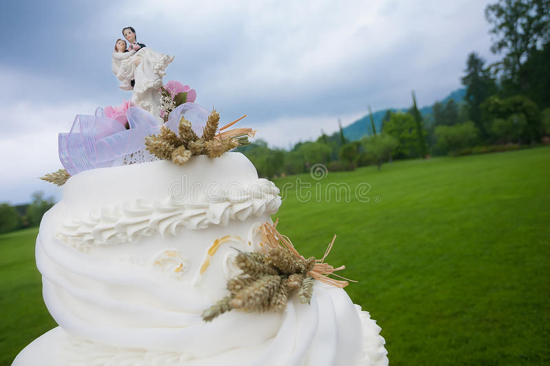 Wedding couple topper royalty free stock image