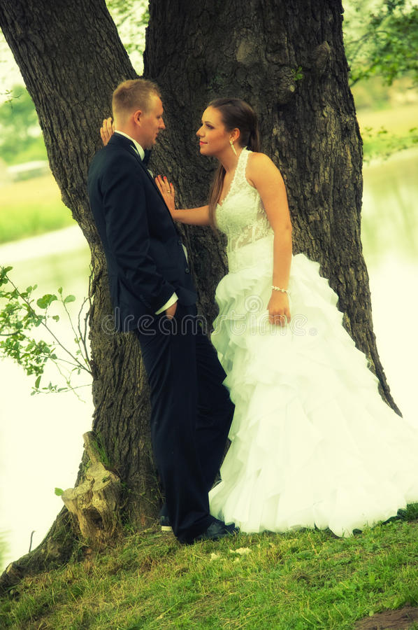Wedding couple on tree. A couple on their wedding day in front of a tree by a lake stock image