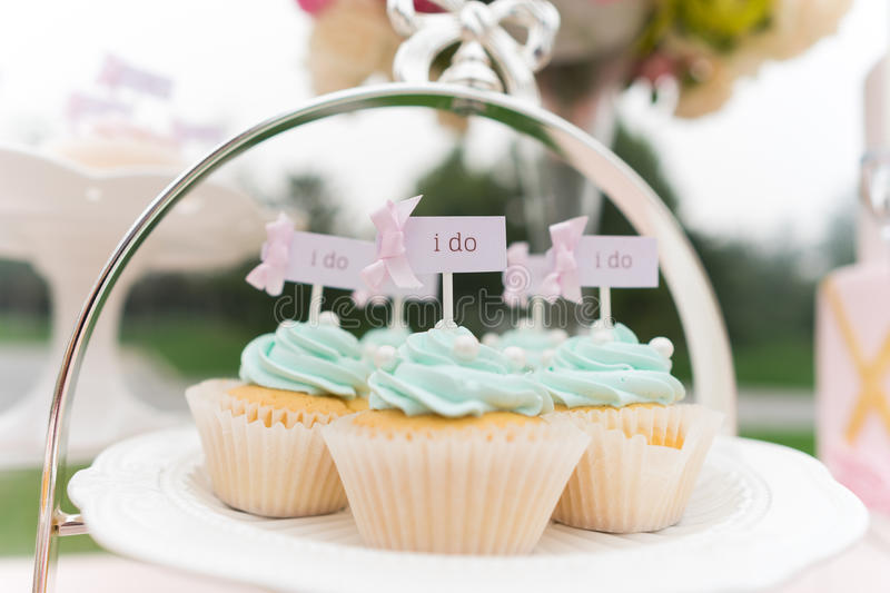 Wedding cupcake. S on wedding party,an i do sign on it stock photo