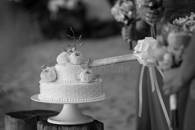 Cutting a wedding cake. royalty free stock photography