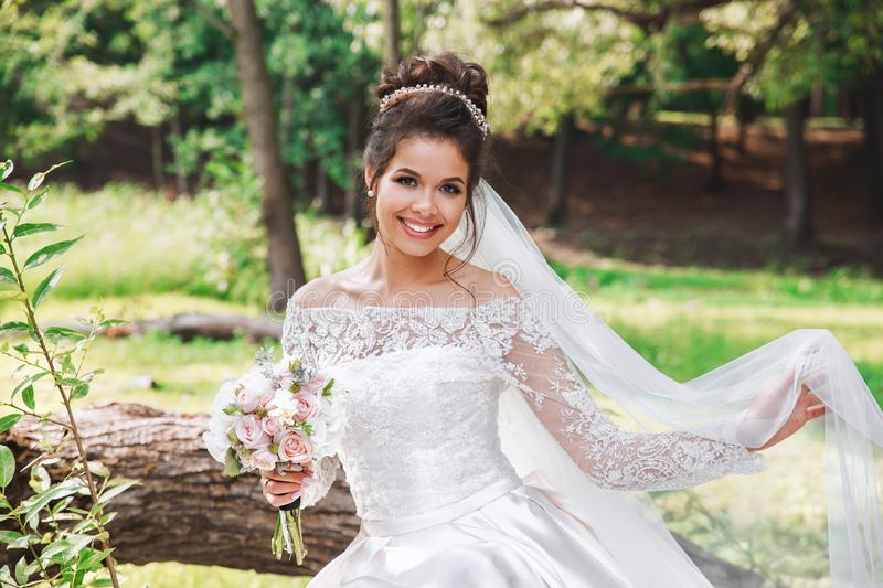 Wedding day. Young beautiful bride with hairstyle and makeup posing in white dress and veil. stock photo