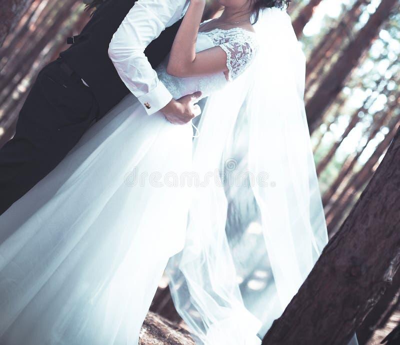 The wedding day stock photo