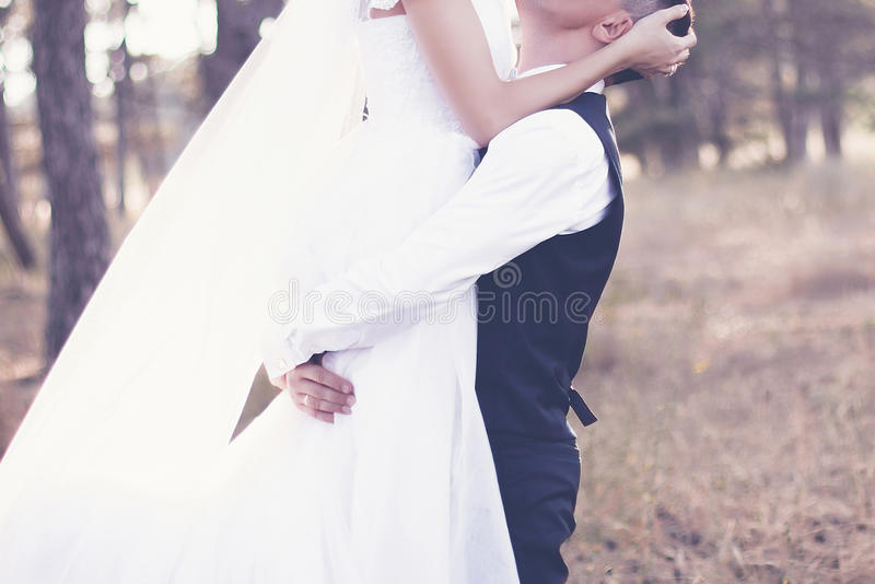 The wedding day royalty free stock photography