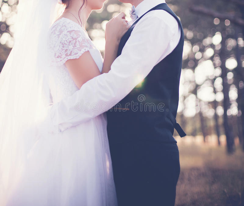 The wedding day royalty free stock images