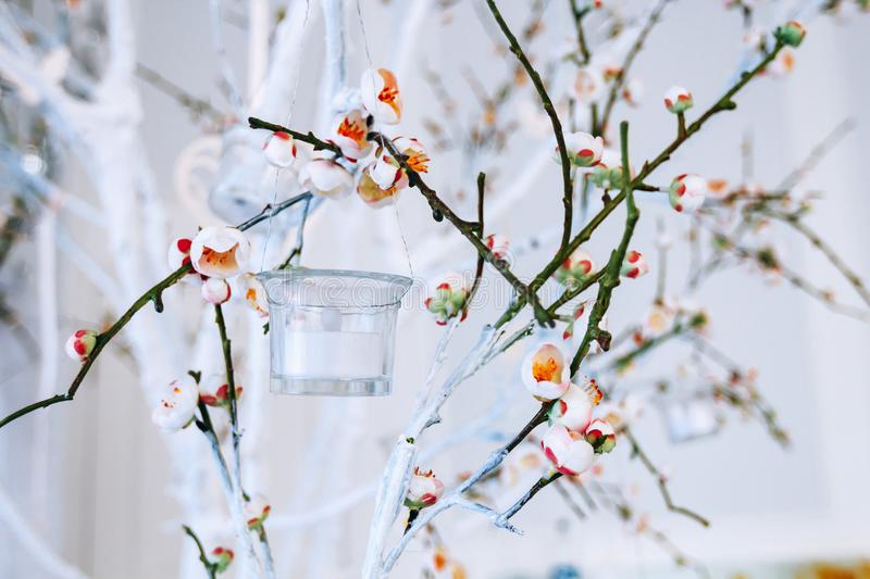 Wedding decor, white and green tree branch with blossoming buds, flowering tree branches with white flowers and a garland of candl. Esticks, branch with blossoms stock image