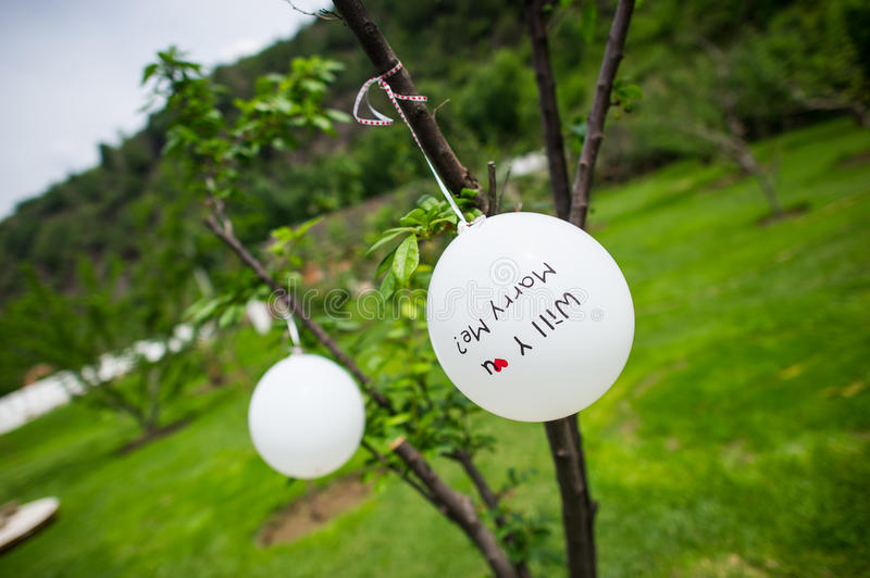 Download Wedding decorations stock photo. Image of background - 33842572