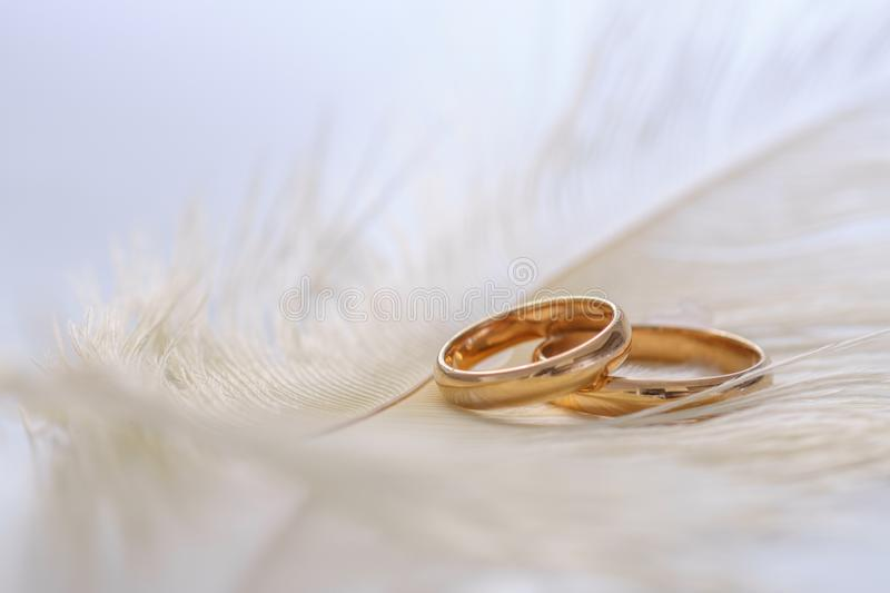 Wedding delicate background with rings and feather. Tenderness, tender love concept stock photography