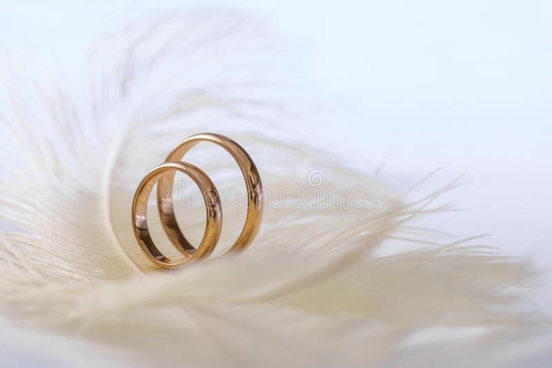 Wedding delicate background with rings and feather. Tenderness, tender love concept stock image