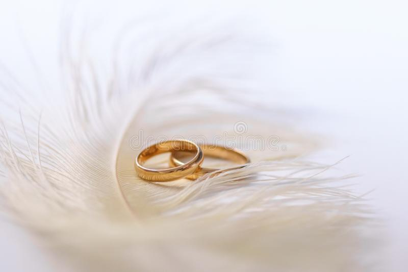 Wedding delicate background with rings and feather. Tenderness, tender love concept stock photos
