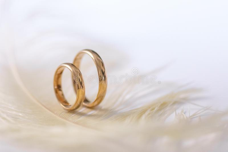 Wedding delicate background with rings and feather. Tenderness, tender love concept royalty free stock photos