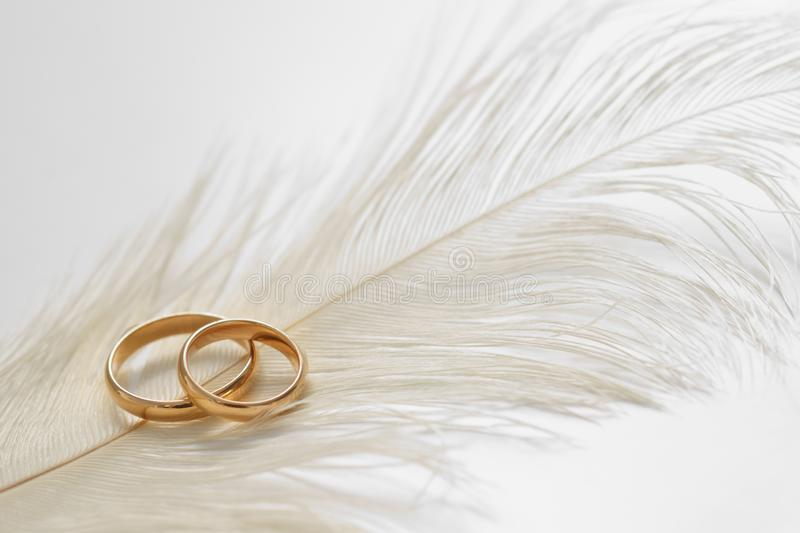 Wedding delicate background with rings and feather. Tenderness, tender love concept royalty free stock photo