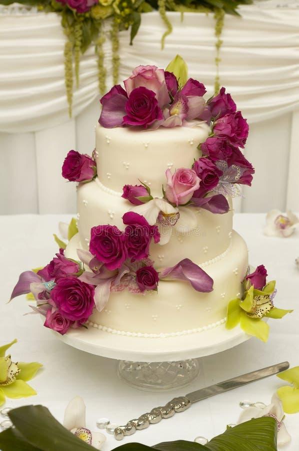 Wedding Delight Cake royalty free stock photo
