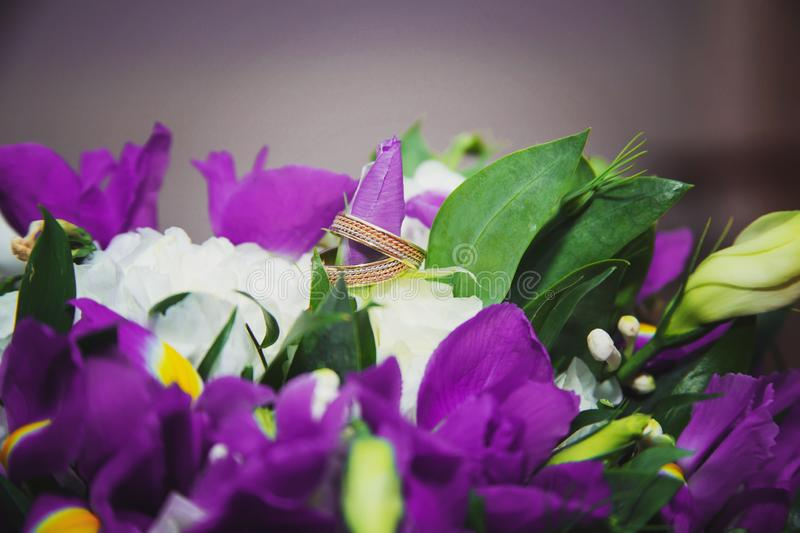 Wedding details: two golden wedding rings on a purple flower stock images