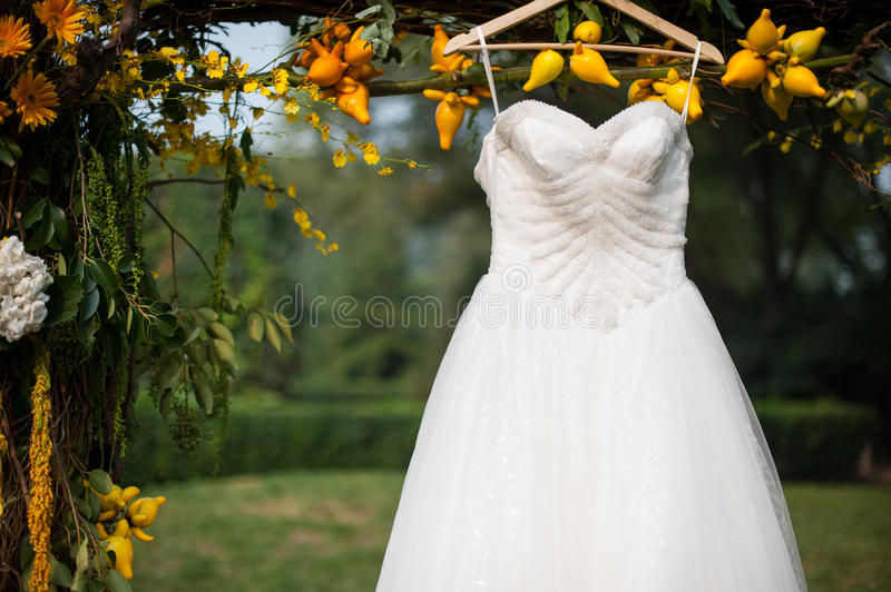 Wedding dress. A beautiful wedding dress hanging in a tree locally royalty free stock images