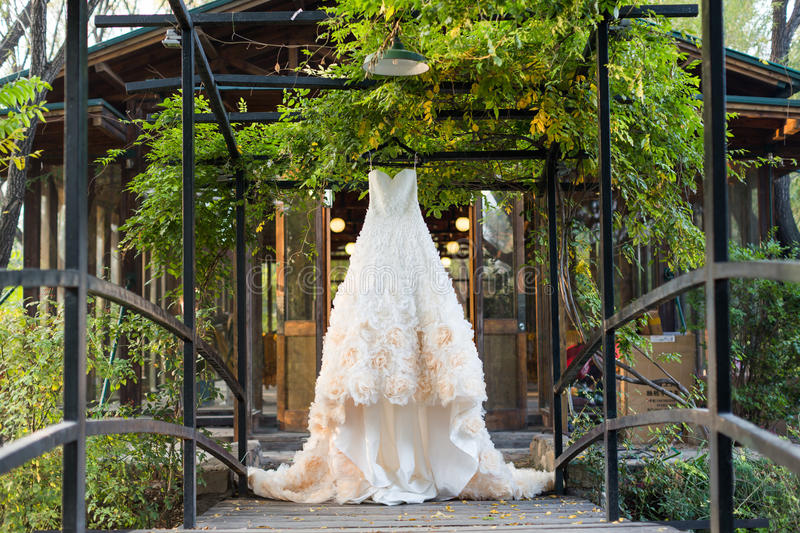Wedding dress. Hanging on the tree royalty free stock photography