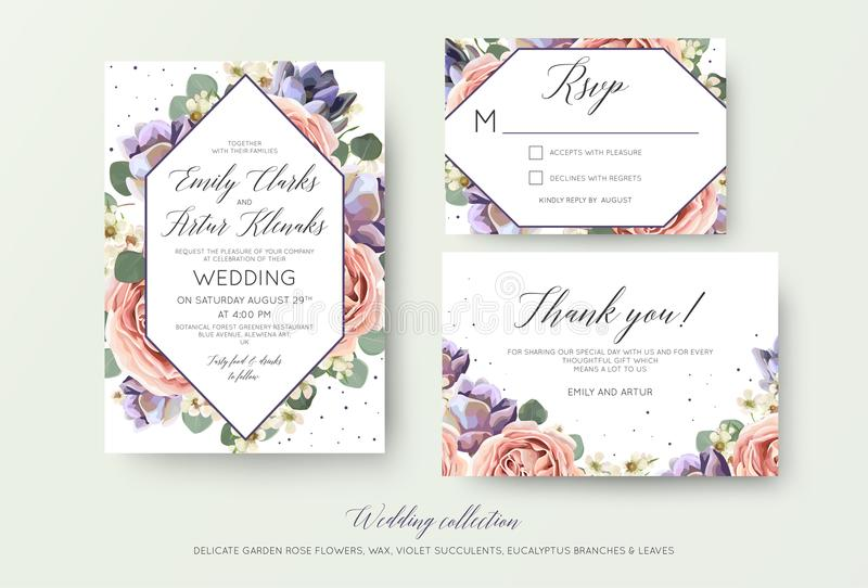 Wedding floral invitation, rsvp, thank you card elegant botanical design with lavender pink garden rose flowers, violet succulent stock illustration