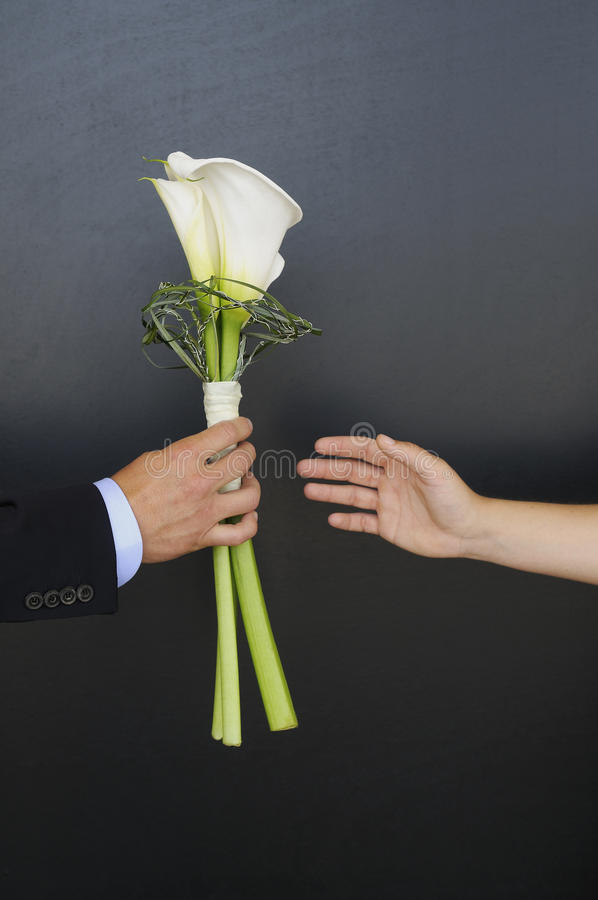 The Wedding Flower. The man hands over a wedding flower to his bride royalty free stock photos