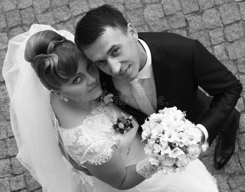 Download Wedding stock photo. Image of romantic, flower, beauty - 36974440