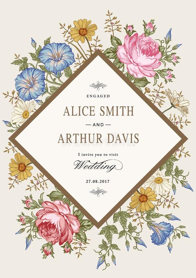 Wedding thanks invitation. Beautiful realistic flowers Chamomile Rose card. Frame, label. Vector victorian Illustration. Petunia stock illustration