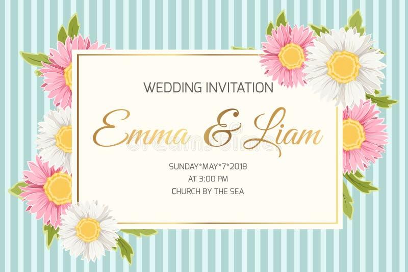 Wedding invitation daisy aster chamomile flowers vector illustration