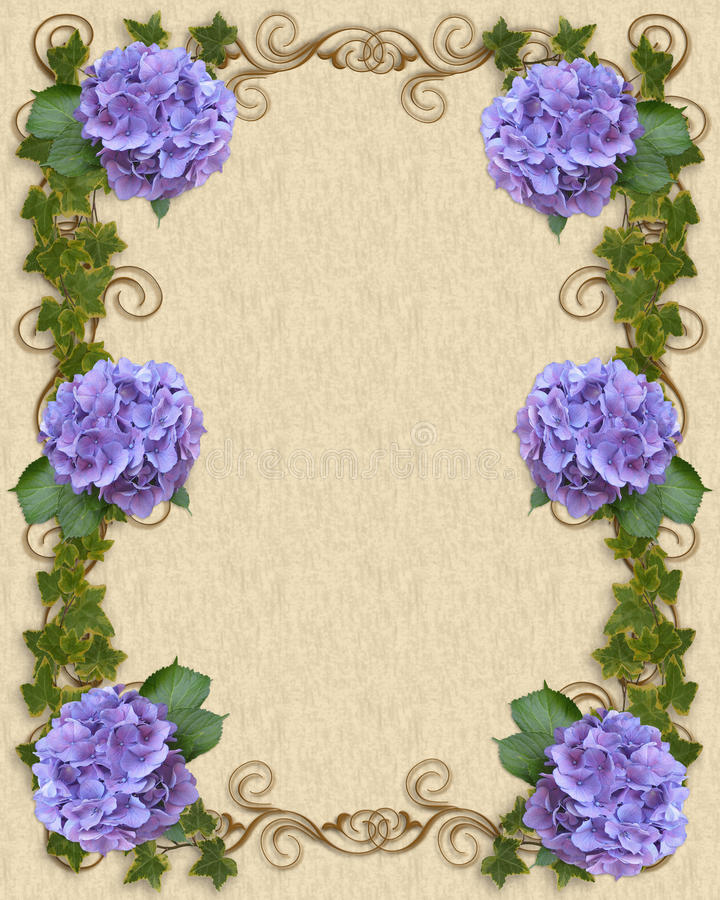 Hydrangea and Ivy Wedding invitation template stock images