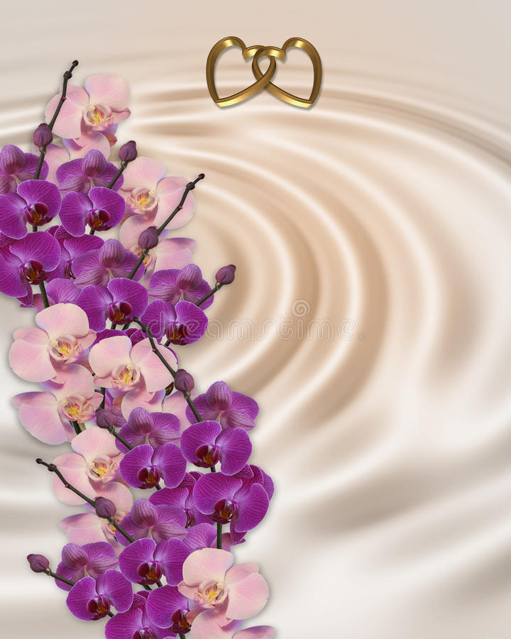 Wedding invitation orchids royalty free stock photography