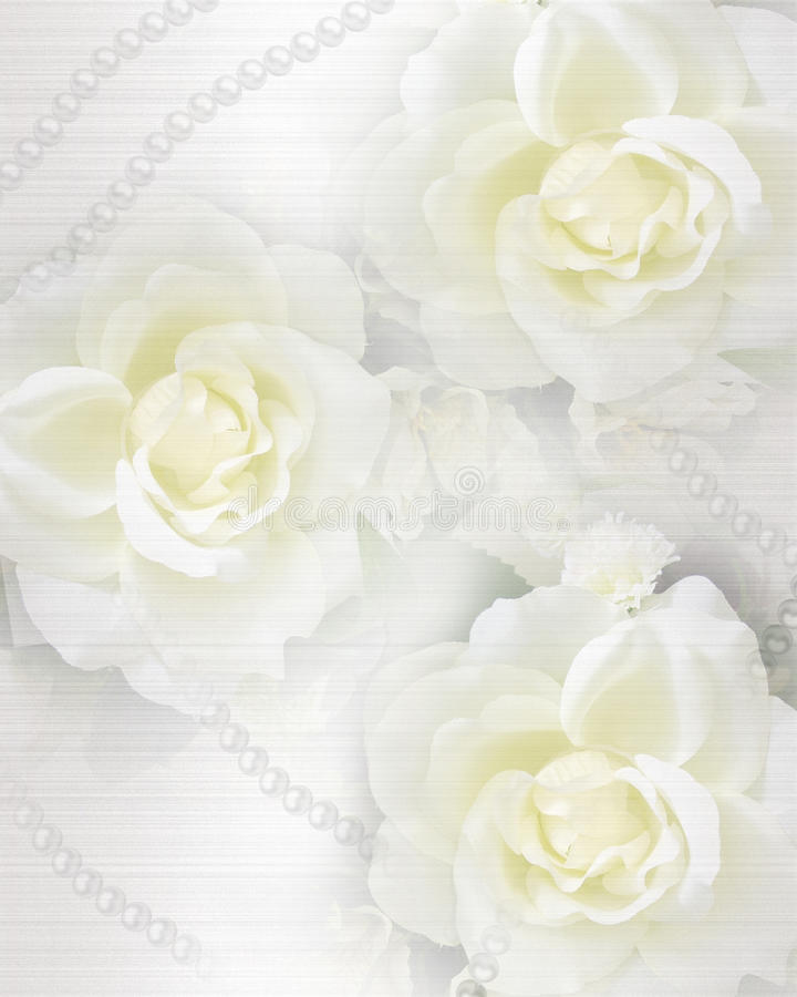 Download Wedding Invitation Roses And Pearls Stock Illustration - Image: 16008612