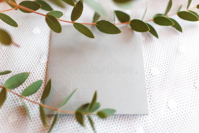 Wedding invitation on a white tablecloth decorated with sprigs royalty free stock images