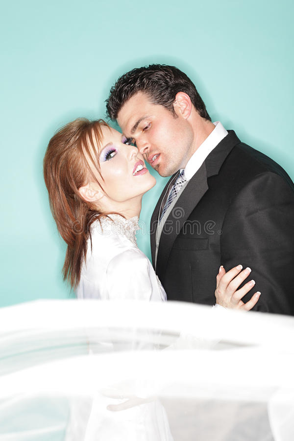 Download Wedding Kiss Royalty Free Stock Photo - Image: 11813285