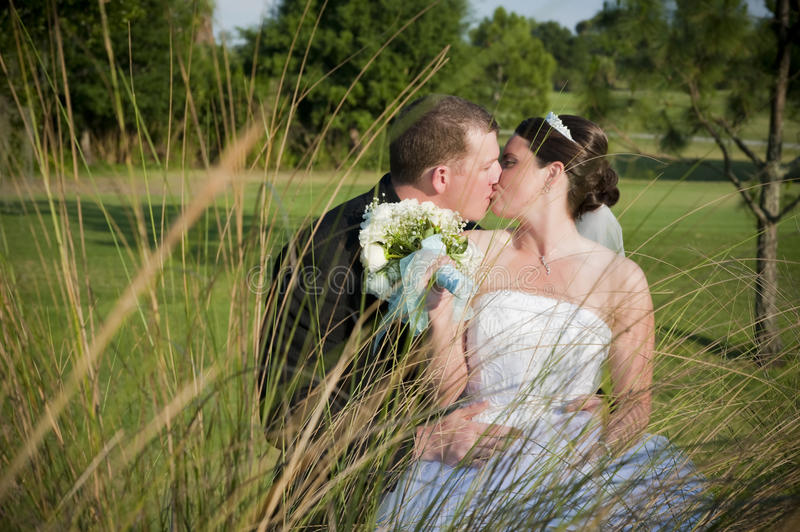 Wedding kiss. View of bride and groom's private kiss through tall grasses outdoors stock photography