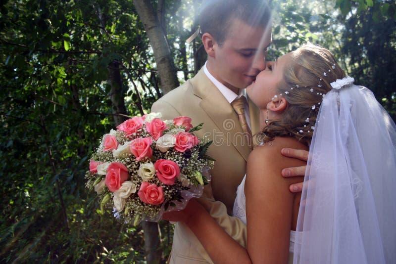 Wedding Kiss Royalty Free Stock Image