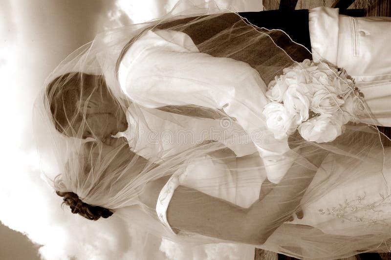 Wedding kiss sepia stock photography
