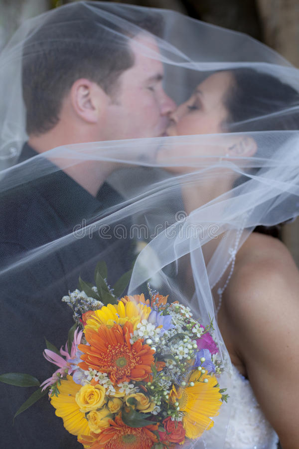Wedding kiss under veil royalty free stock photography