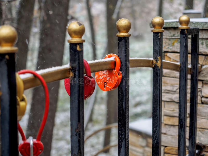 The wedding lock on a fence lattice covered with snow stock image