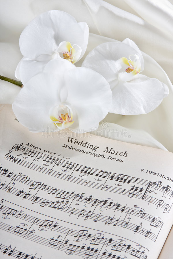 Download Wedding march and orchids stock photo. Image of romantic - 4166854