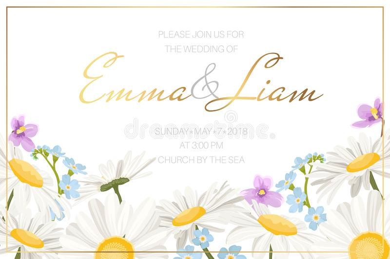 Forget Me Not Wedding Invitations: Daisy Stock Illustrations