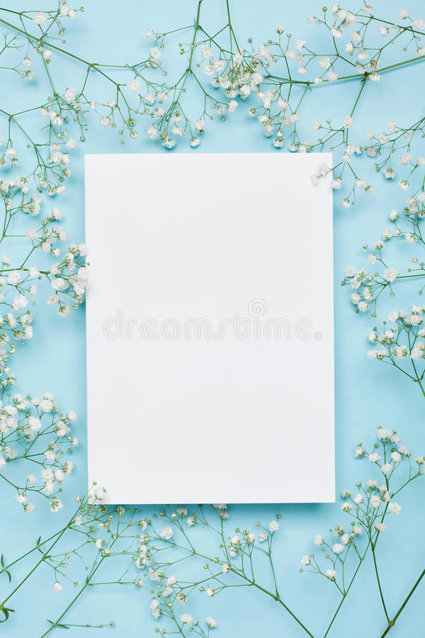 Wedding mockup with white paper list and flowers gypsophila on blue background from above. Beautiful floral pattern. Flat lay. Wedding mockup with white paper royalty free stock image