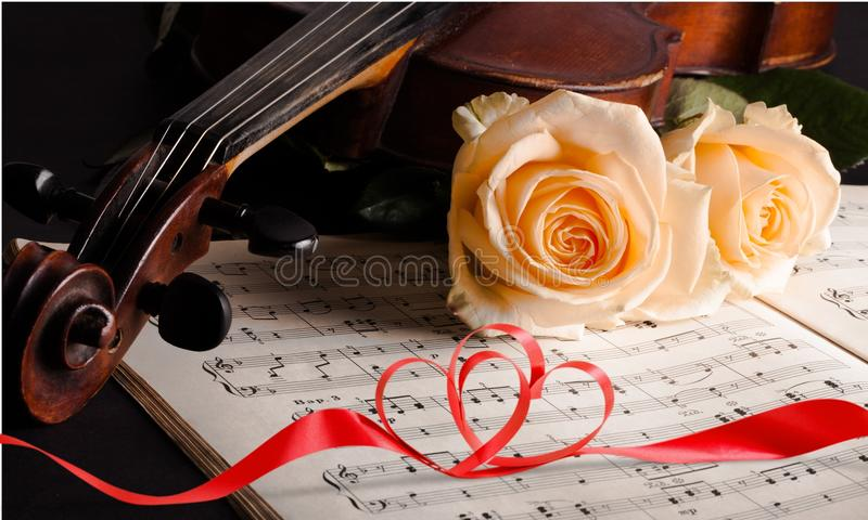 Wedding. Music violin flower  vows bride singing royalty free stock photography
