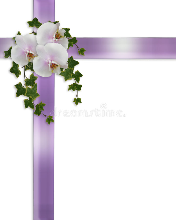 Free Wedding Or Easter Border Orchids And Ivy Royalty Free Stock Photo - 8345505