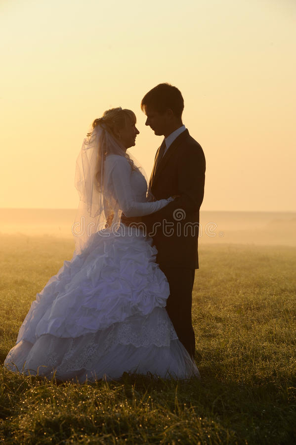 Download Wedding pair stock image. Image of evening, dress, gown - 12710635
