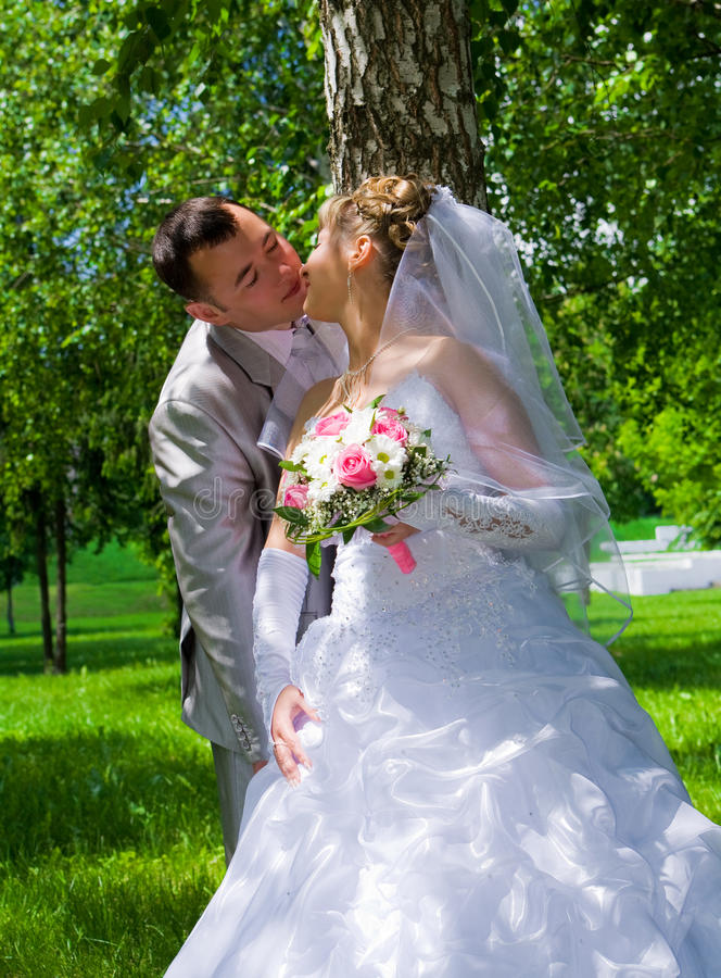 The Wedding Pair Kisses Near A Tree Trunk Stock Images