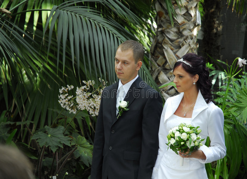 Wedding in park. Wedding couple standing with greenery backdrop stock images