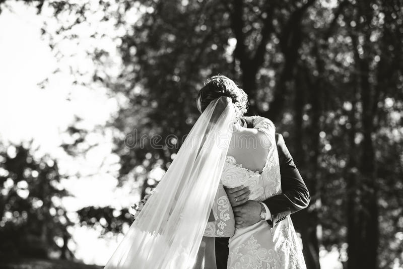 Wedding photo, happy bride and groom together. Wedding photo. Happy bride and groom together royalty free stock photos