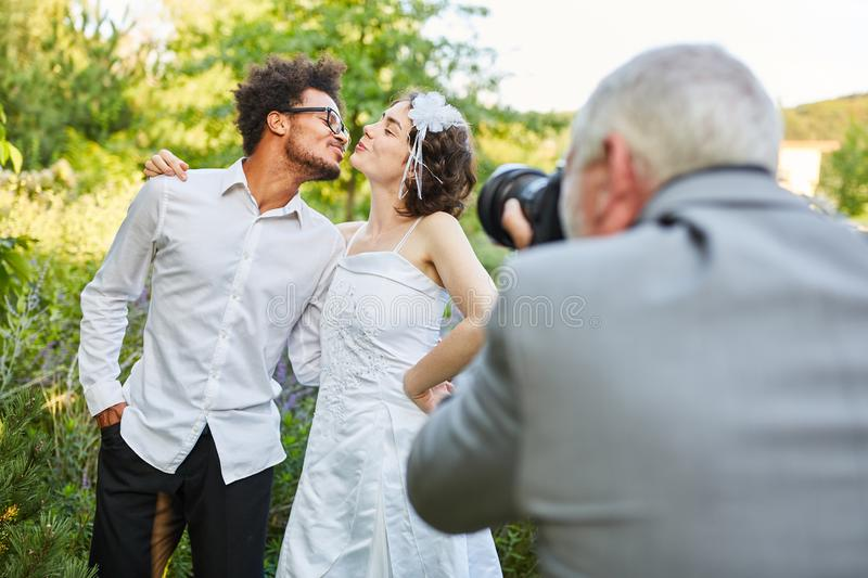 Wedding photographer photographs newlyweds kissing. On the wedding day royalty free stock photography