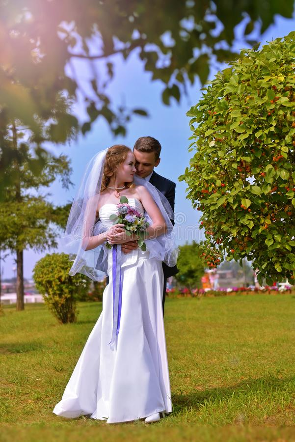 Wedding photography. The bride and groom in nature. Young couple in the park against the sky royalty free stock photo