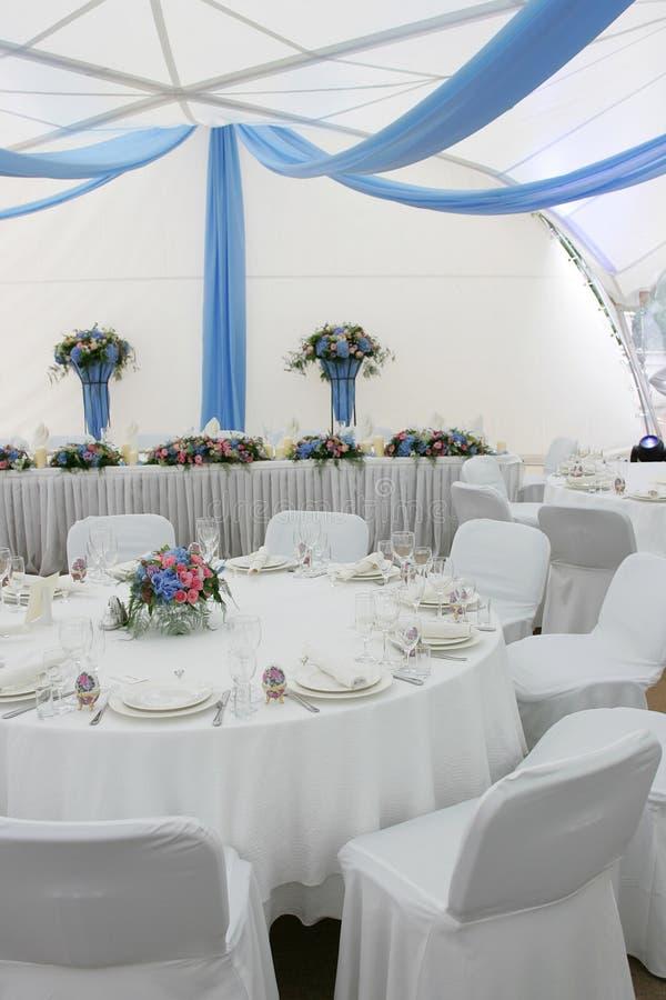 Wedding Reception Portrait Stock Image