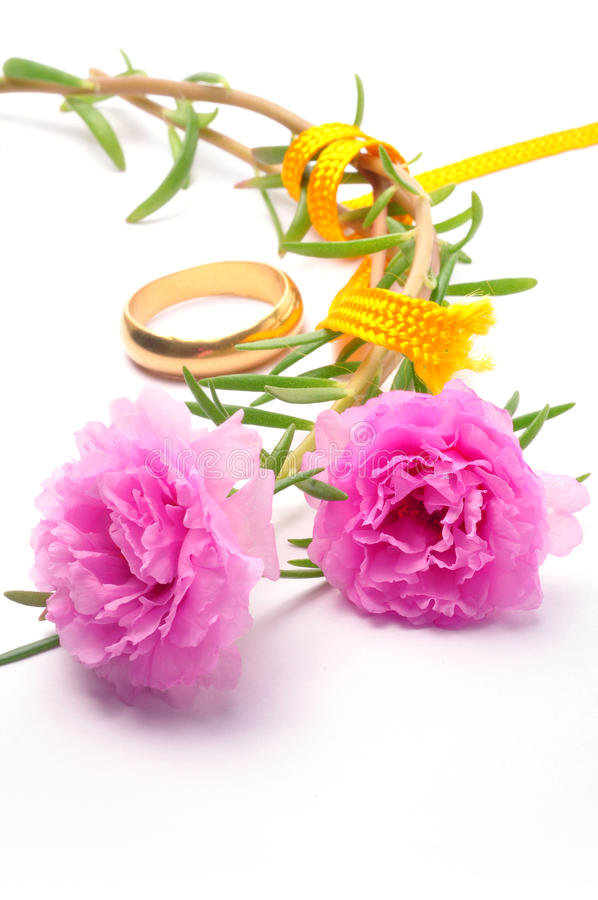 Wedding Ring Stock Photo Image Of Romance Purity