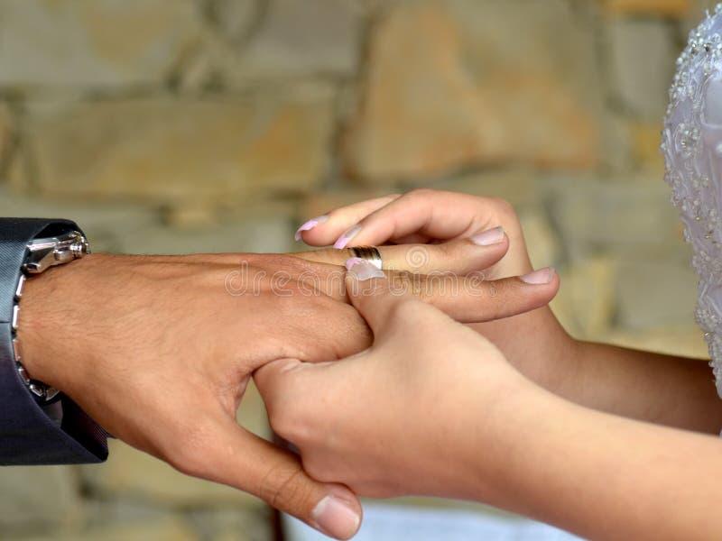 Download Wedding ring stock illustration. Image of bride, love - 27287528